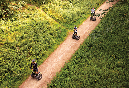 Forest Segway Experience for one