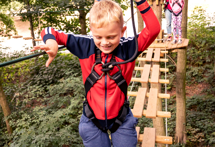 Treetop Adventure Experience - all age bands.